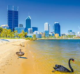 Lexis-English-Perth